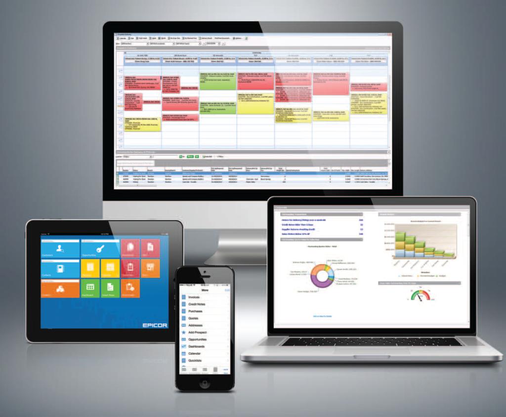 BisTrack Epicor Microsoft Framework Multidevice