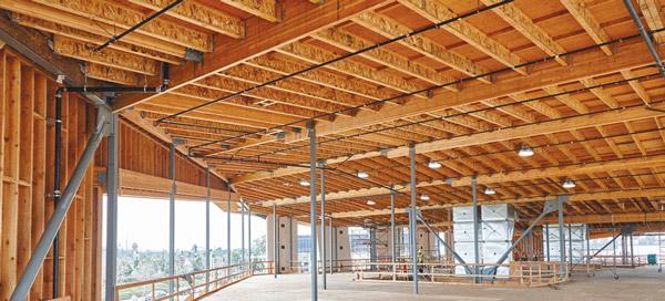 In_depth_engineered_lumber